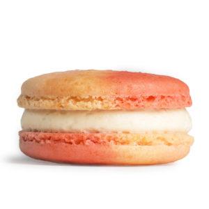 Cherry Blossom Macaron