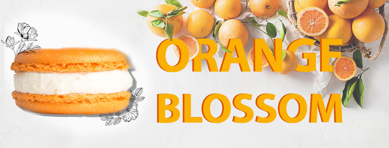 Orange Blossom 1
